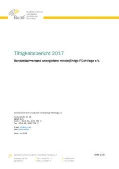Tätigkeitsbericht des Bundesfachverbandes umF für das Jahr 2017