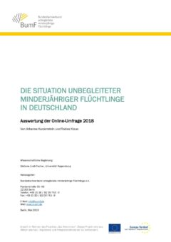 2019_05_20_Auswertung BumF-Online Umfrage 2018
