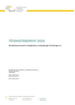 Tätigkeitsbericht für das Jahr 2020